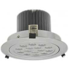 YB15N LED ceiling light 15W white