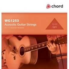 Acoustic Guitar Strings 12-53