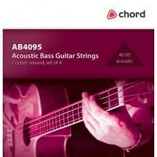 Acoustic bass guitar string set 40-95