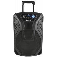 qtx Cassa acustica attiva con microfono bluetooth usb sd portatile Busker 10